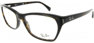 RX 5298 2012 55/140